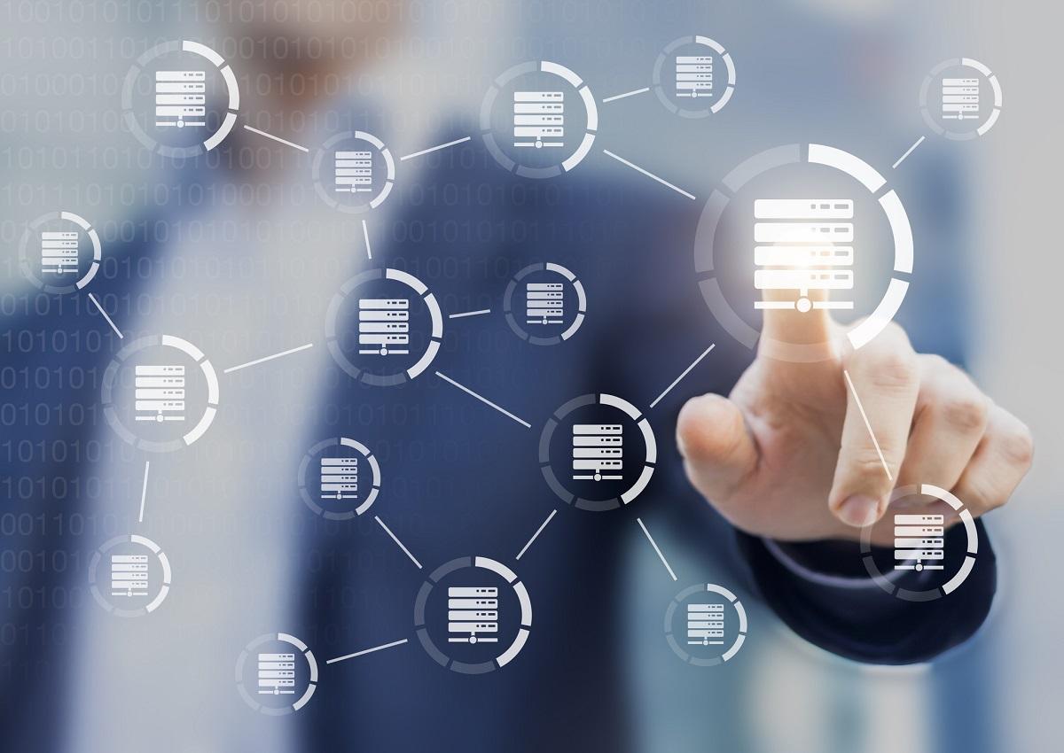 koncepcja sieci danych